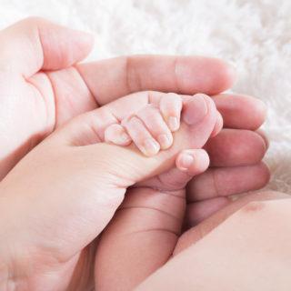 新生児家族祝福