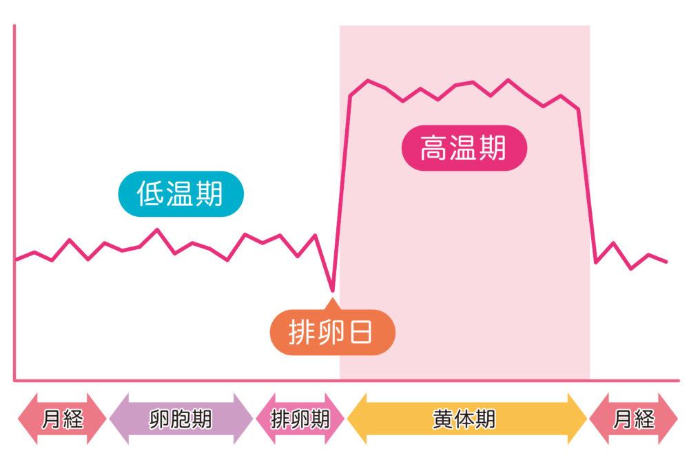 基礎体温イメージ 基礎体温表