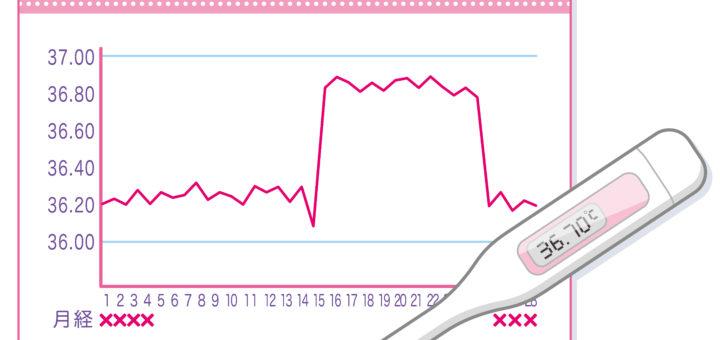基礎体温イメージ 基礎体温表 基礎体温計